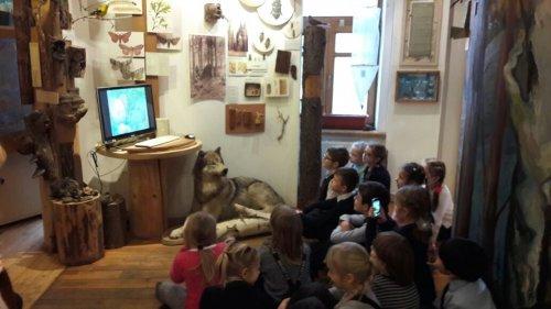 IMG 20161201 WA0052 500x281 Экскурсия в Российский музей леса